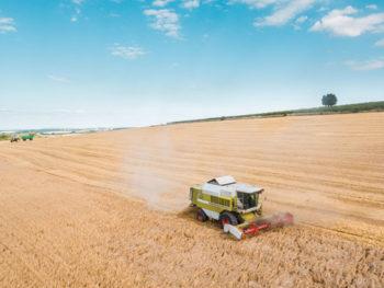 Terres agricoles, un business juteux
